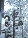jan-26-2009-snow-storm-wind-sculputre-or-ice-sculpture.JPG