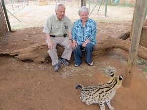 22sep14 - looking at ocelot 2