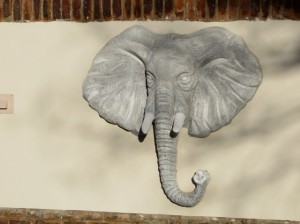 Sept14 - Walk - Elephant Head