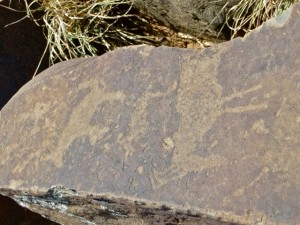 oct14 - rock art - elan