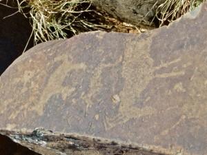 oct14 - rock art - elan