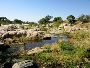 June2015 - Kruger - rocks and water