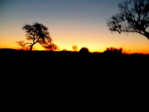 15June15 -Kruger Trip - Sunset - First Night
