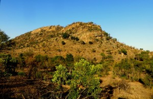 15June15 -Kruger Trip - Landscape Cliff